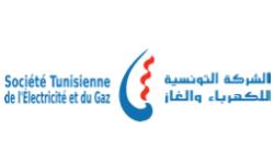 Logo STEG Société Tunisienne de l'Electricité et du Gaz, partenaire HEI Tunisie
